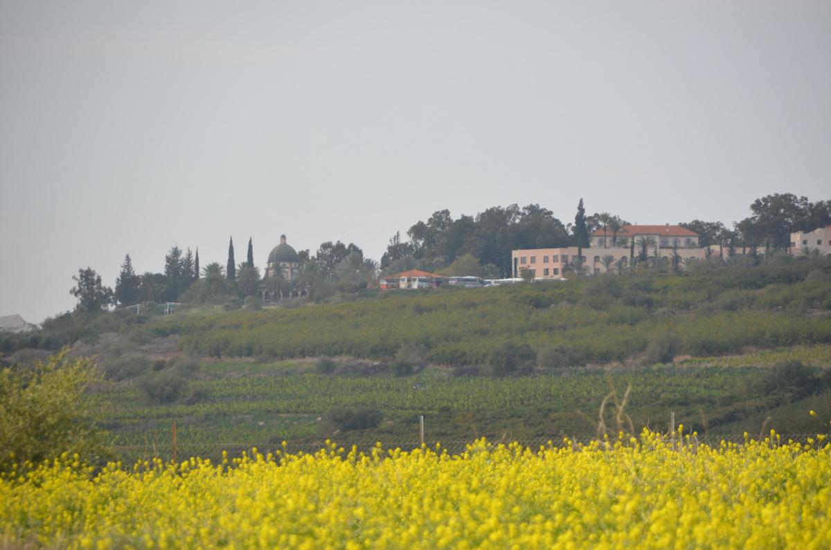 Izrael2014_370
